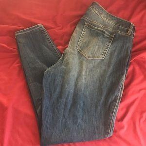 Torrid premium medium wash skinny jeans